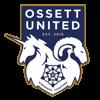 Ossett United FC Web